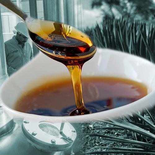 historia de la miel de agave