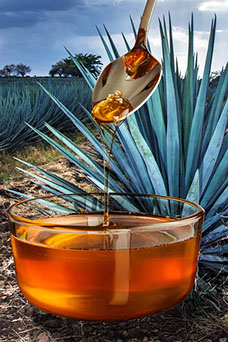 las propiedades de la miel de agave son beneficiosas