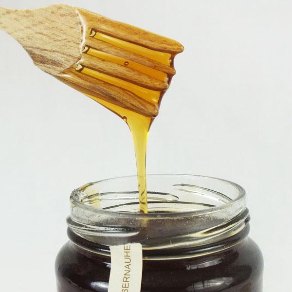 frasco de vidrio con miel de encina y espátula para mieles