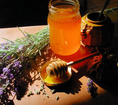 todas las propiedades de la miel de lavanda