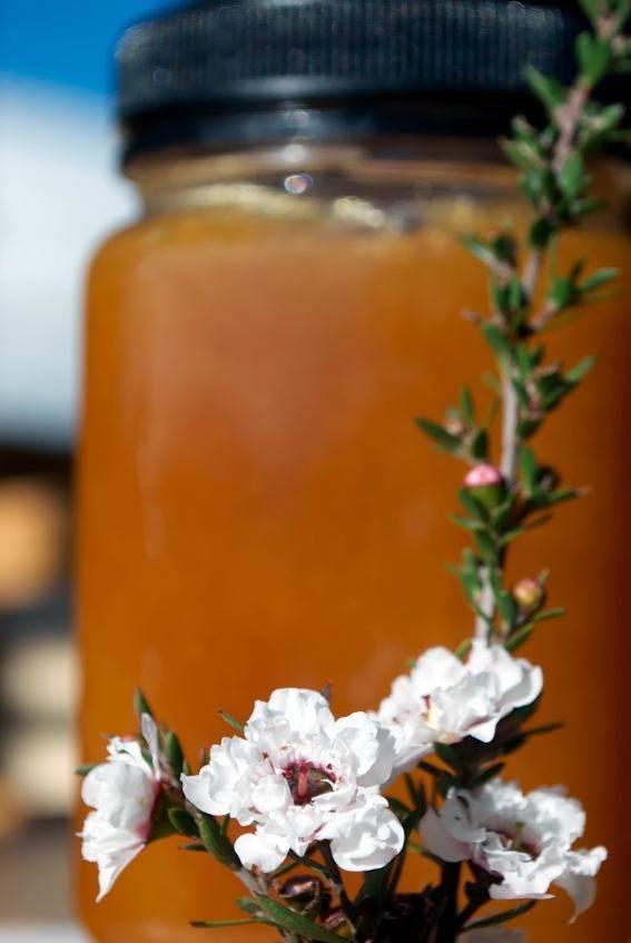 miel de manuka en recipiente de vidrio y flor