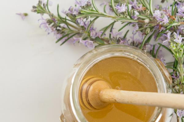 miel de romero con mielera y ramo de romero