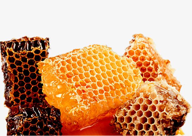 diferentes panales de miel