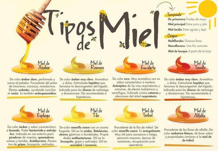 infografía tipos de miel